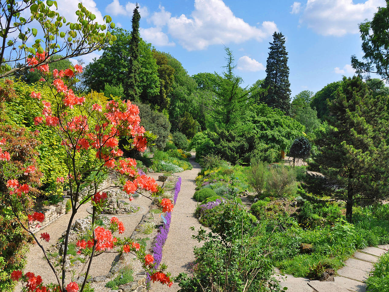 Fotos Jardin des Plantes in Paris in Bildergalerie - Jardin ...