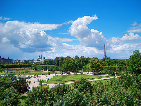 Jardin des Tuileries - Ile de France - Paris (Paris)